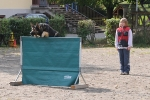 Hundesport_11