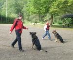 Hundesport_3