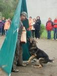 Hundesport_6