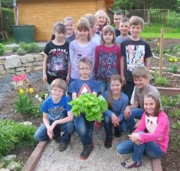 Der 1. Salat aus dem neuen Schulgarten