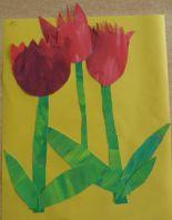 Tulpen_3