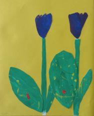 Tulpen_5