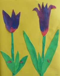 Tulpen_6